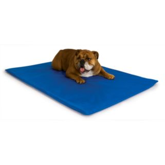 K and H Pet Cool Bed III - Medium