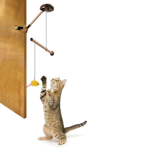 Pioneer Pet Tiger Mobile Motorized Cat Toy