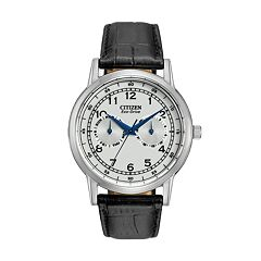 Citizen Eco-Drive Men's Leather Watch - AO9000-06B