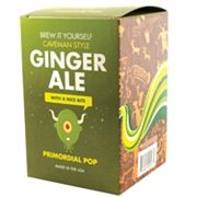 Copernicus Brew It Yourself Ginger Ale Kit by University Games