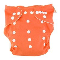 Trend Lab Cloth Diaper & Liner