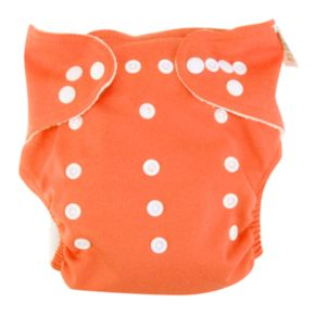 Trend Lab Cloth Diaper and Liner