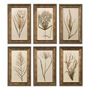 6 pc Wheat Grass Framed Wall Art Set