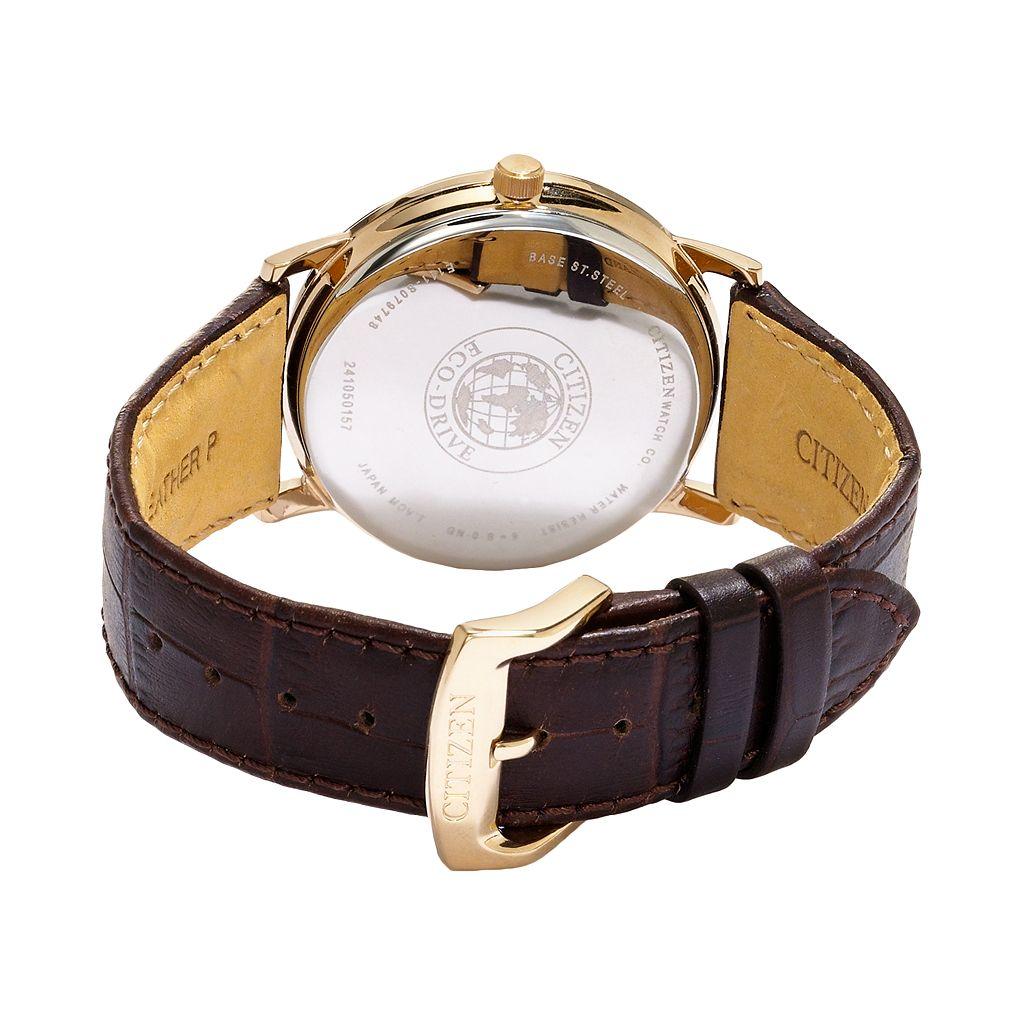 Citizen Eco-Drive Men's Leather Watch - BM7193-07B
