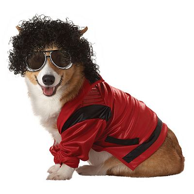 Pop King Costume - Pet