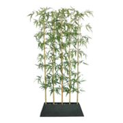 Laura Ashley Lifestyles Bamboo Tree