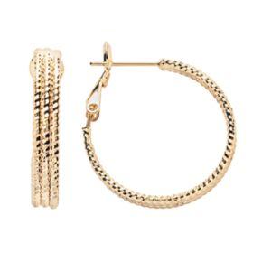 14k Gold Plate Hoop Earrings