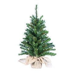 Kurt Adler 2.5-ft. Pine Pre-Lit  Desktop Artificial Christmas Tree