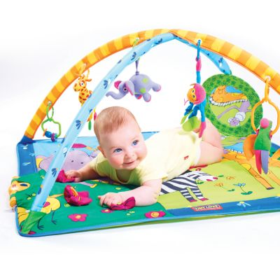 Tiny Love Gymini Super Deluxe Lights and Music Activity Gym
