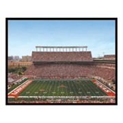 Texas Longhorns' Stadium Canvas Art