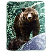 Bear Hi Pile Super Plush Throw Blanket