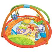 Playgro Noah's Ark Discovery Gym