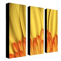 3 pc ''Flame'' Wall Art Set