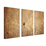3-pc. ''Bird'' Wall Art Set