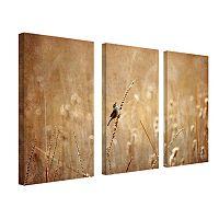3 pc ''Bird'' Wall Art Set