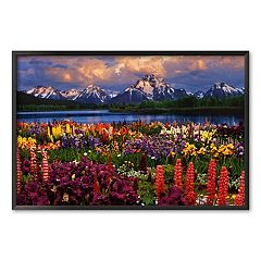 Art.com 'Grand Teton, Wyoming' Framed Art Print