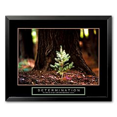 Art.com 'Determination: Little Pine' 24' x 30' Framed Art Print