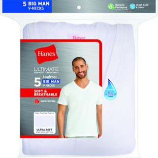 Big & Tall Hanes Classics 5-pk. V-Neck Tees