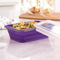 Food Network™ 6-Cup Collapsible Food Storage Container
