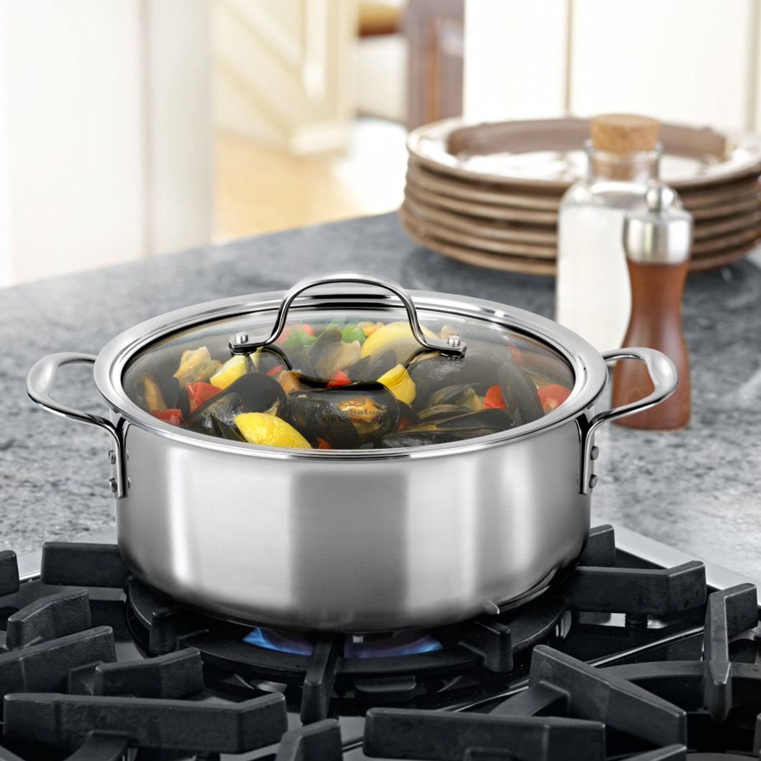 Tri-Ply Stainless Steel 5-qt. Covered Dutch Oven