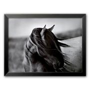 Art.com Fierce Grace Framed Art Print by Tony Stromberg