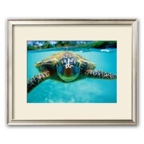 Art.com Honu, Turtle Framed Art Print by Kirk Lee Aeder
