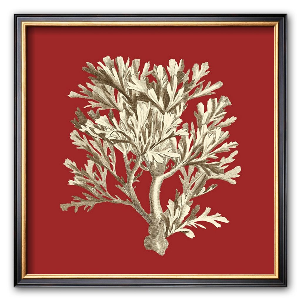 Art.com ''Coral on Red IV'' Framed Art Print