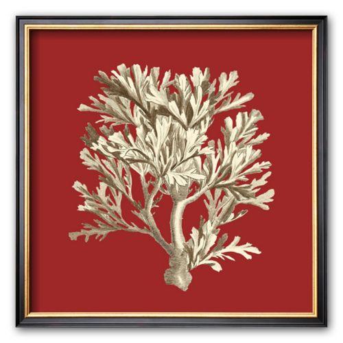 Art.com Coral on Red IV Framed Art Print