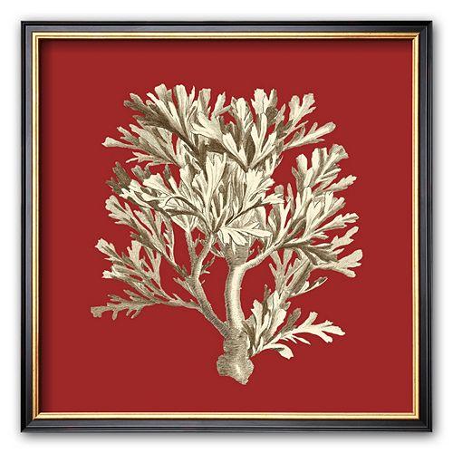 Art.com ''Coral on Red IV'' Framed Art Print