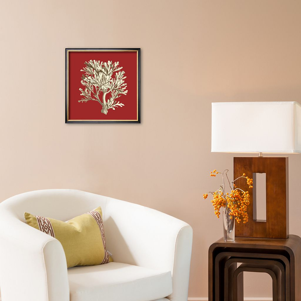 Art.com Coral on Red IV Framed Art Print