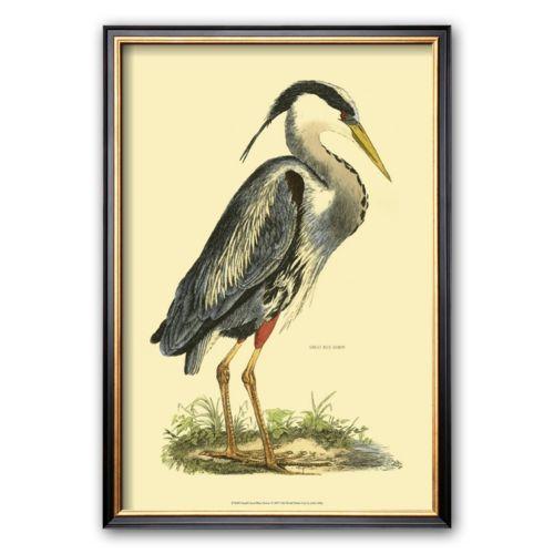 Art.com Great Blue Heron Frame...