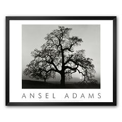 Art.com 'Oak Tree, Sunset City, California, 1932' Framed Art Print by Ansel Adams