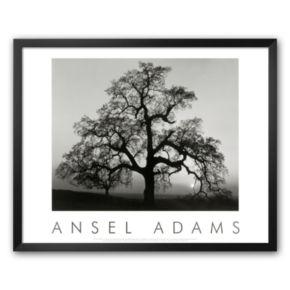 Art.com Oak Tree, Sunset City, California, 1932 Framed Art Print by Ansel Adams