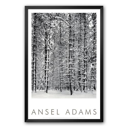 "Art.com ""Pine Forest in Snow, Yosemite National Park, 1932"" Framed Art Print by Ansel Adams"