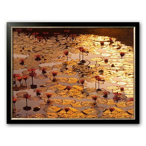 "Art.com ""Lotus Pond"" Framed Art Print by Bruno Baumann"