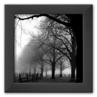 "Art.com ""Black and White Morning"" Framed Art Print by Harold Silverman"