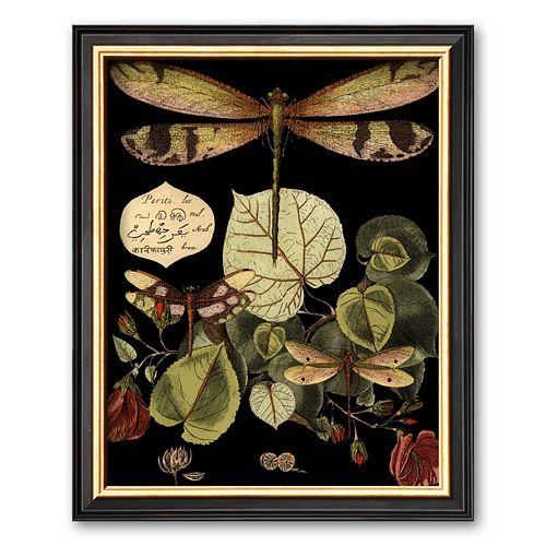 Art.com Whimsical Dragonfly on Black II Framed Art Print