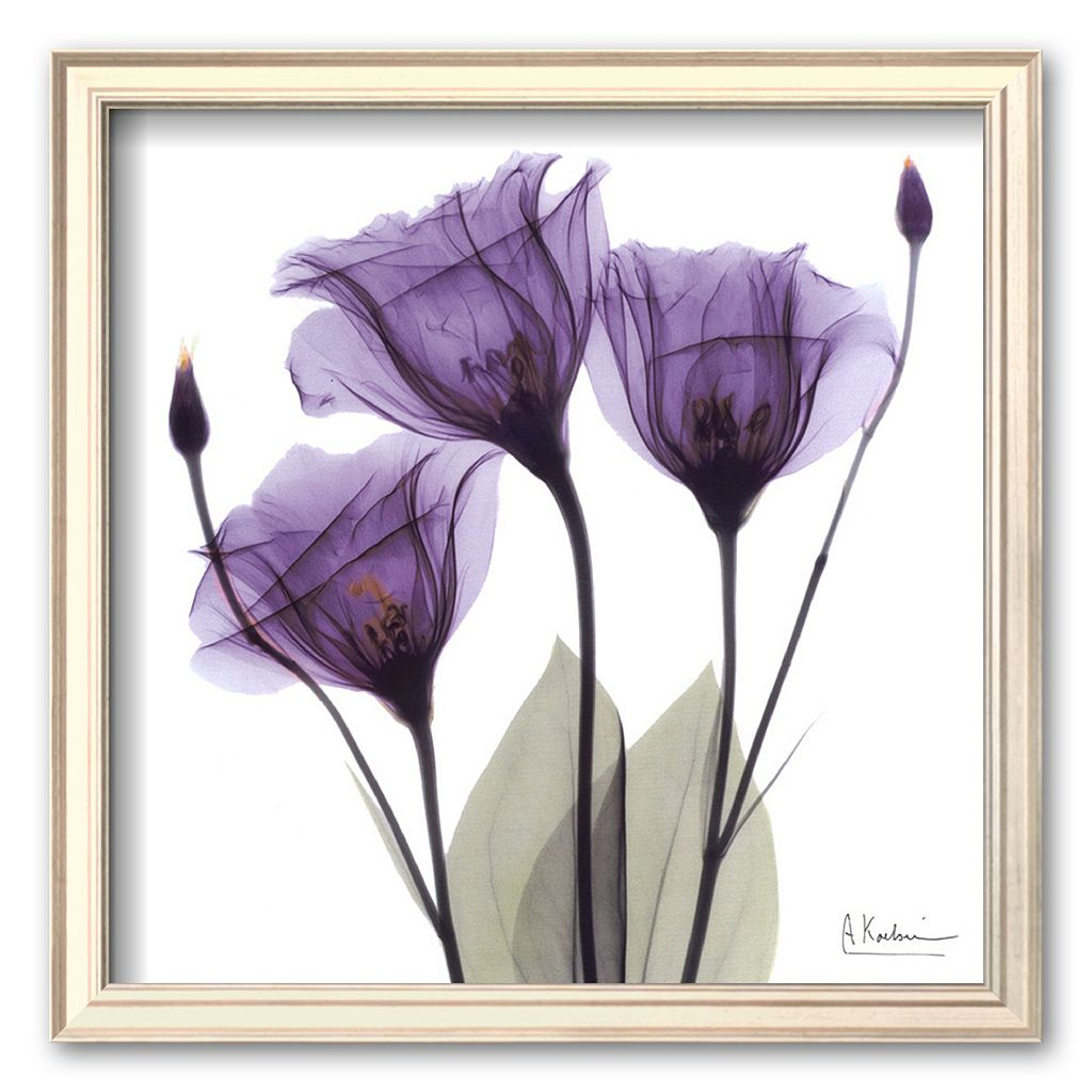 Art.com ''Royal Purple Gentian Trio'' Framed Art Print by Albert Koetsier
