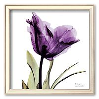 Art.com ''Royal Purple Parrot Tulip'' Framed Art Print by Albert Koetsier