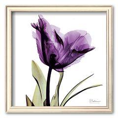 Art.com ''Royal Purple Parrot Tulip'' Framed Art Print by Albert Koetsier