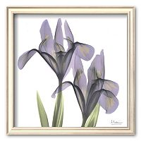 Art.com ''A Gift of Flowers in Purple'' Framed Art Print by Albert Koetsier