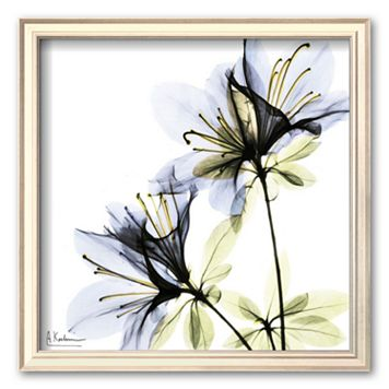 Art.com ''Blue Twin Azalea in Bloom'' Framed Art Print by Albert Koetsier