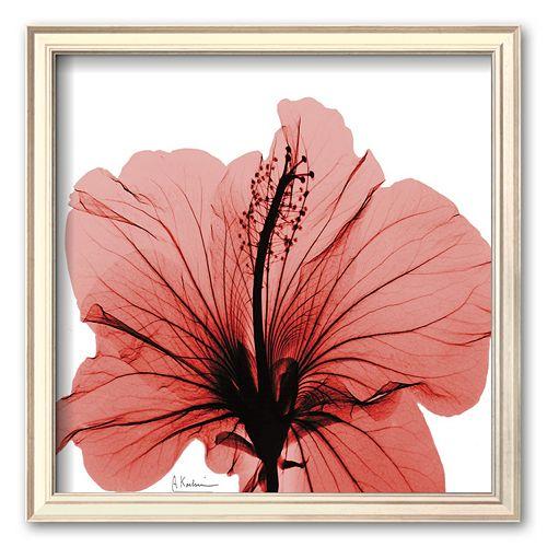 Art.com Close-Up of Red Beauty Framed Art Print by Albert Koetsier