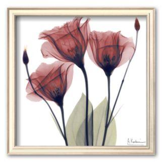 Art.com Gentian Trio in Red Framed Art Print by Albert Koetsier