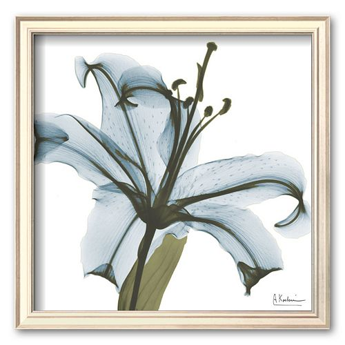 Art.com ''May Lily'' Framed Art Print by Albert Koetsier