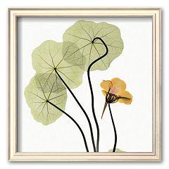 Art.com 'Nasturtium' Framed Art Print by Albert Koetsier