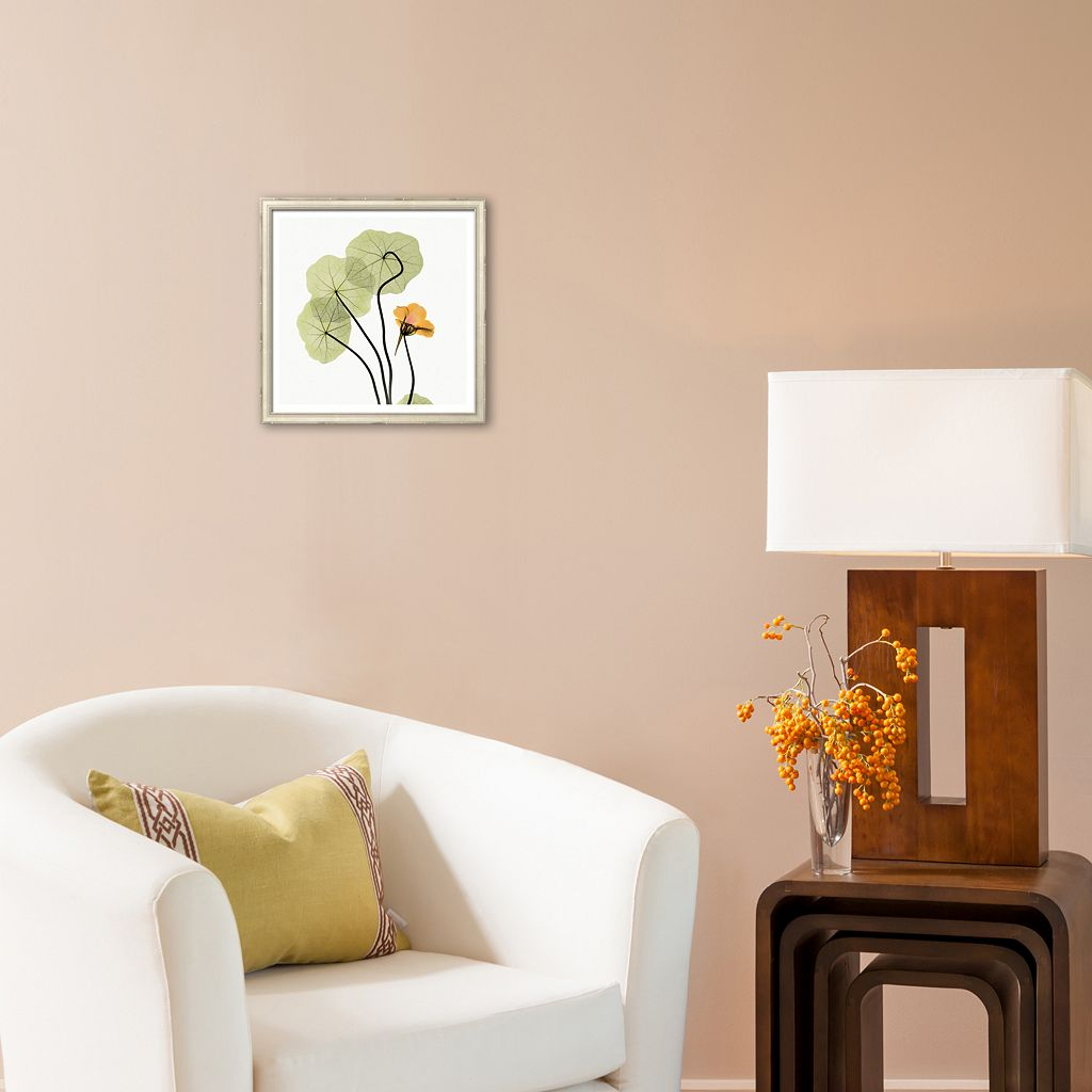 Art.com Nasturtium Framed Art Print by Albert Koetsier