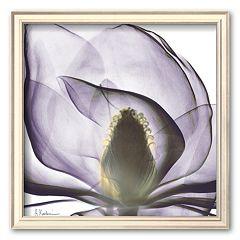 Art.com 'Precious Orchid in Purple Close' Framed Art Print by Albert Koetsier