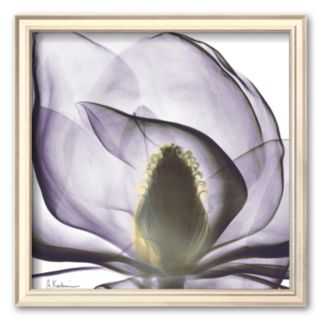 Art.com Precious Orchid in Purple Close Framed Art Print by Albert Koetsier