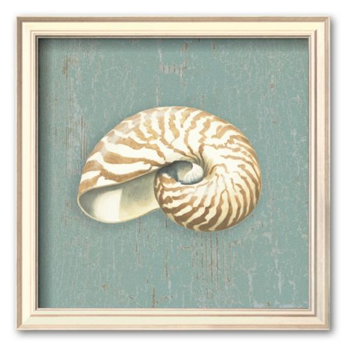 Art.com Nautilus Framed Art Print By Lisa Danielle